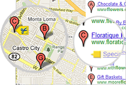 Google Tags for Local Business Search