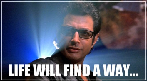 Jeff Goldblum Quote