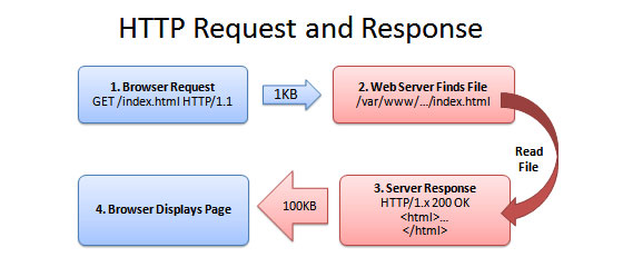http request amd response time